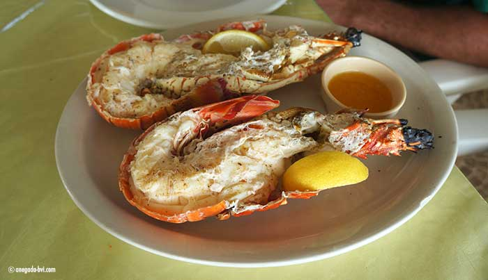 anegada-lobster-700