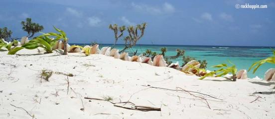 anegada-beach-cowreck-beach