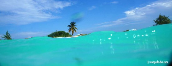 anegada-bvi-travel-island-info
