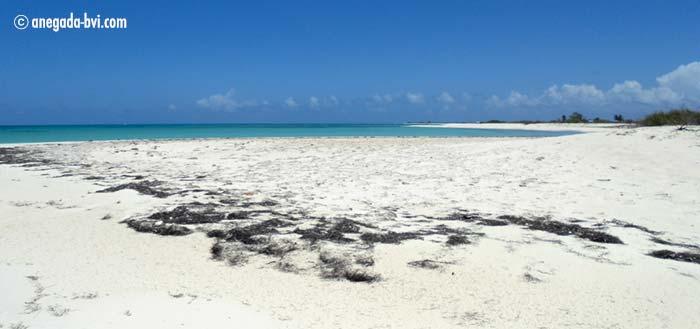 anegada-drowned-island-bvi