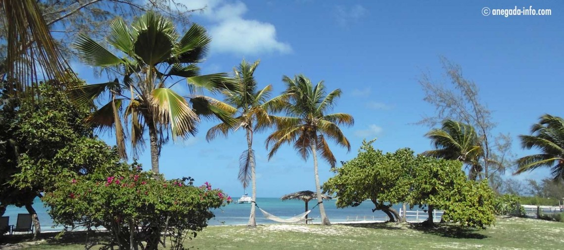 anegada-reef-hotel